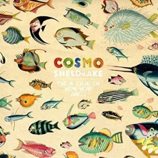 COSMO SHELDRAKE The Much Much How How And I CD