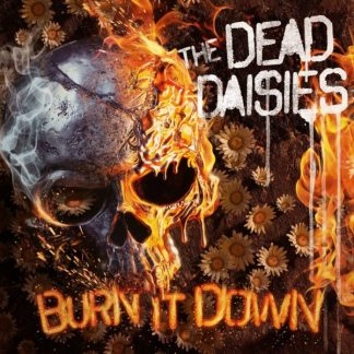 DEAD DAISIES Burn It Down LP Picture Disc Limited Edition