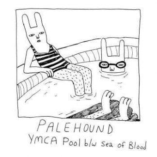 "PALEHOUND Ymca Pool 7"" single"