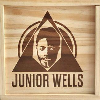 JUNIOR WELLS Box Of Blues BOX 6 CD