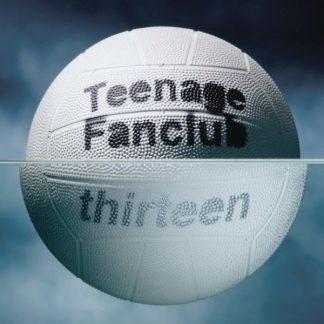 "TEENAGE FANCLUB Thirteen  LP + 7"" Limited Edition"