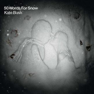 KATE BUSH 50 Words For Snow CD