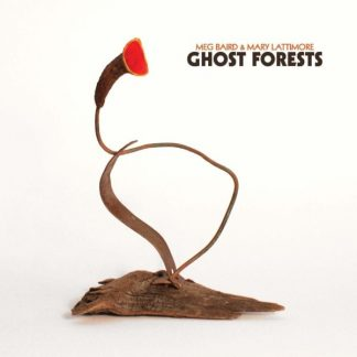 MEG BAIRD & MARY LATTIMORE Ghosts Forests CD
