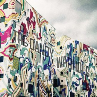 DANDY WARHOLS Why You So Crazy LP