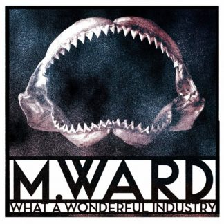 M. WARD What A Wonderful Industry LP Limited Edition