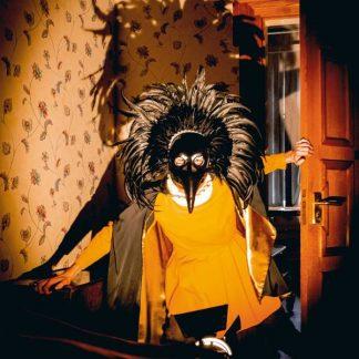DRENGE Strange Creatures LP Limited Edition