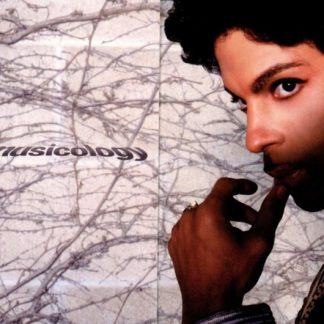 PRINCE Musicology DLP Limited Edition