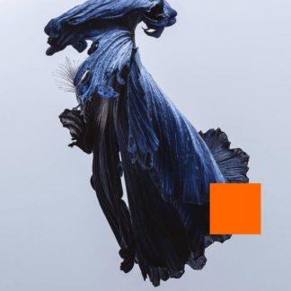 TALOS Far Out Dust LP Limited Edition