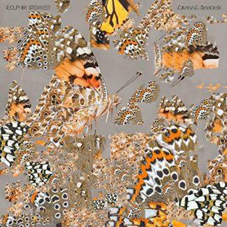 DOLPHIN MIDWIVES Liminal Garden LP