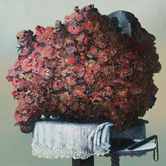 THE CARETAKER Everywhere at the End of Time: Stages 4-6  BOX 4 CD Limited