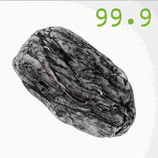 99.9 (Daniel B.Prothese) Silex 2CD