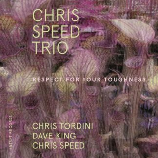 CHRIS SPEED TRIO Respect For Your Toughness CD