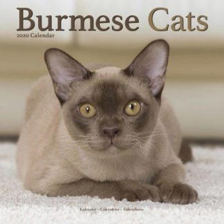 Birmani SQUARE BURMESE