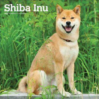 Shiba Inu CALENDARI 2020 Browntrout  SQUARE NUOVO