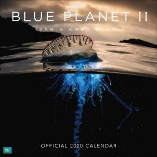 BBC Blue Planet II CALENDARI 2023 DANILO SQUARE NUOVO