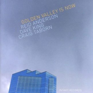 REID ANDERSON / DAVE KING / CRAIG TABORN Golden Valley Is Now CD