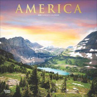 America  CALENDARI 2020 Browntrout SQUARE NUOVO