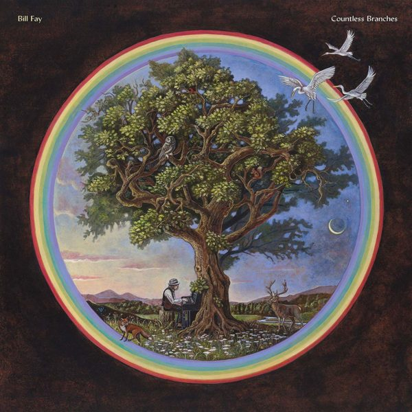 BILL FAY Countless Branches DLP Deluxe Edition