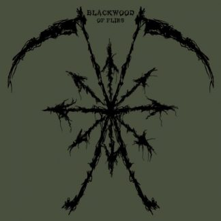 BLACKWOOD Of Flies LP Etched Edition
