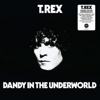 T.REX Dandy In The Underworld LP Limited Edition