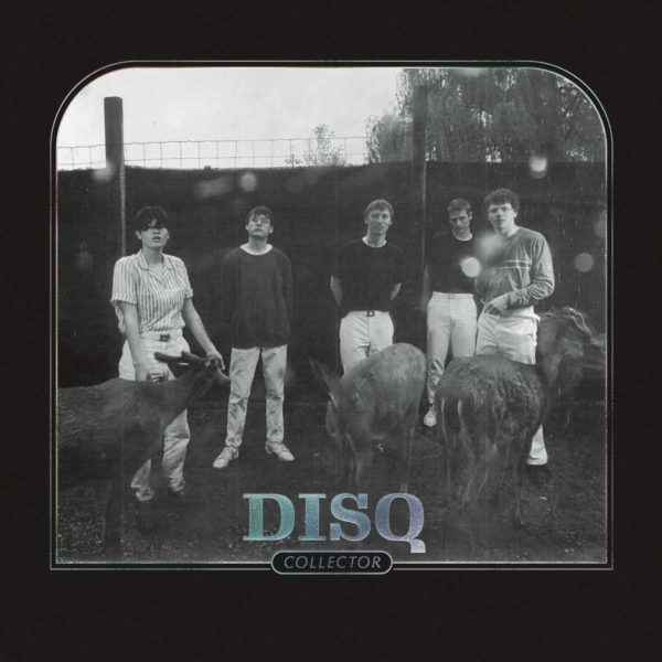 DISQ Collector LP Limited Edition